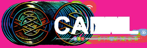 logo-canal-r10